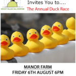Flash Village Duck Race